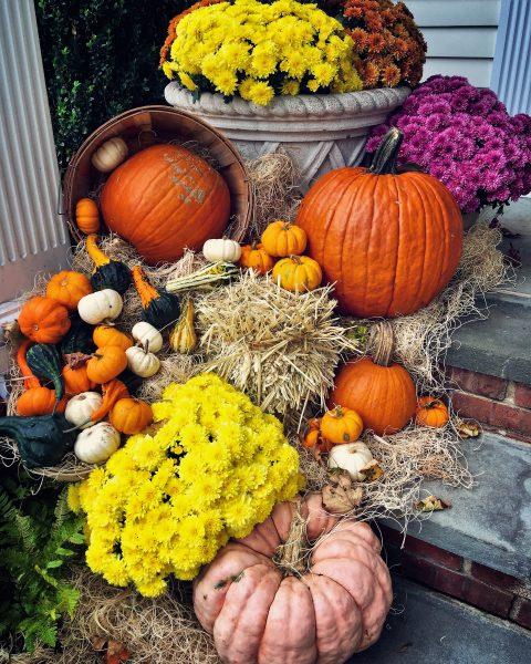 fall displays