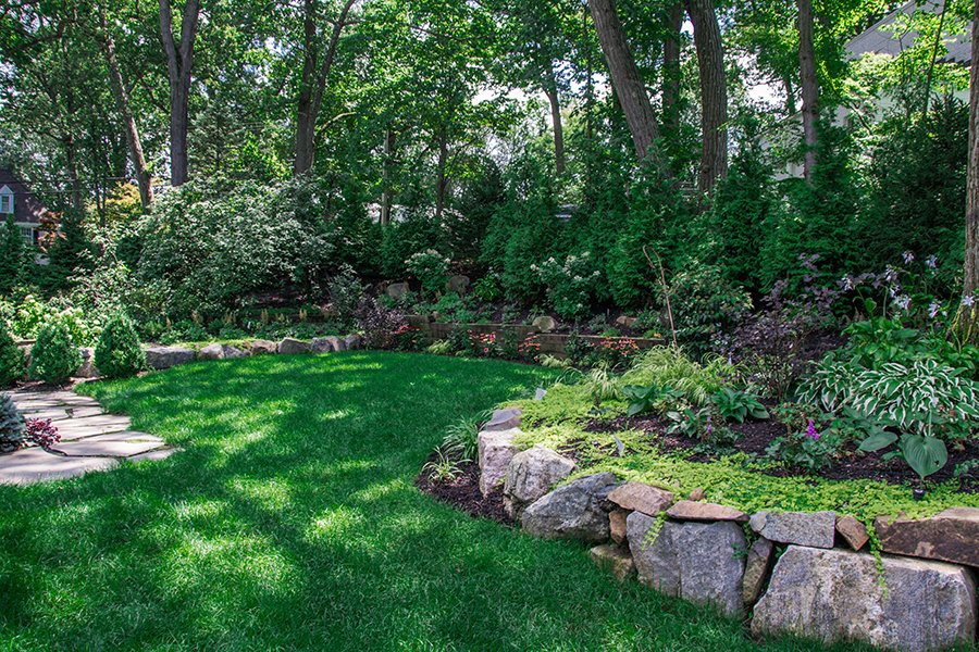 Backyard garden screening design