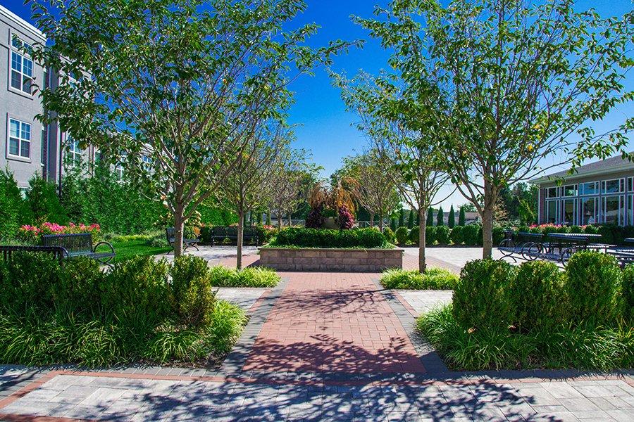Communal Garden Space