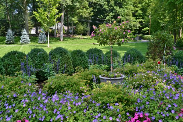 Choosing a Landscaper That's Right for You
