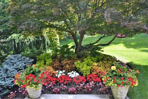 summer container gardens