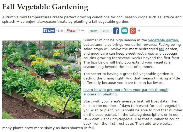 NJ Landscaping Company Offers Some Tips for Successful Fall Gardening