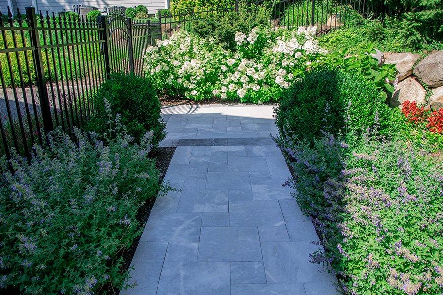 Garden Planting for Walkway
