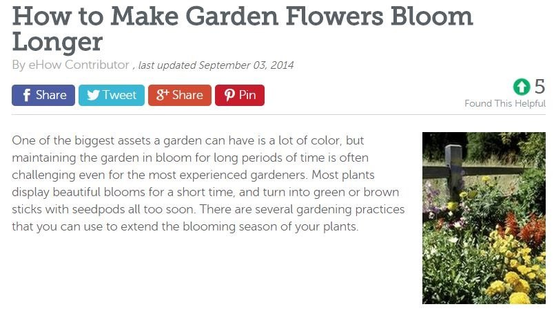 NJ Landscaping Firm's Tips on Extending Your Flowers' Blooming Season