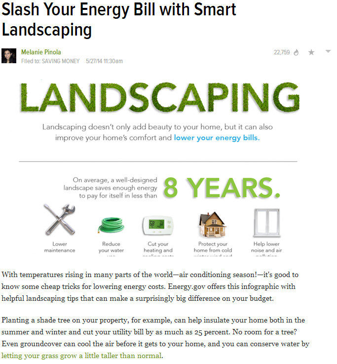 Consult NJ Landscapers About Your Yard's Energy Saving Potentials