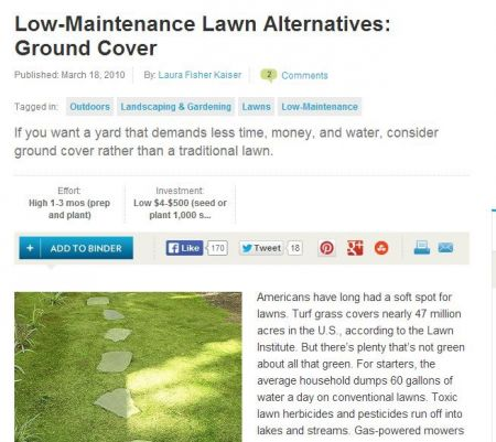 NJ Landscape Company Discusses Low-Maintenance Turf Grass Alternatives
