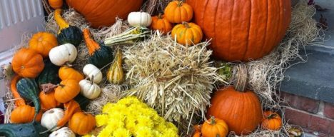 fall-planters