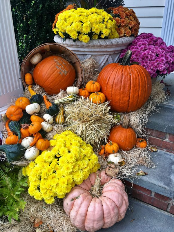 Fall Planters and Fall Landscaping Projects