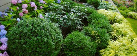 garden-design-plans
