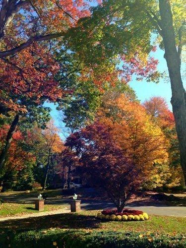 October Colors in NJ