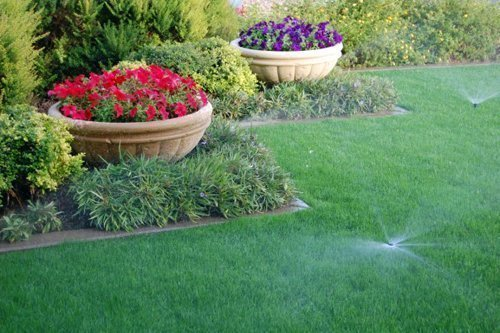 July – Hydrate your Lawn