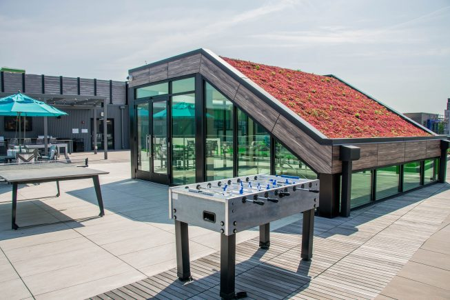 Living Roof Design for Added Interest