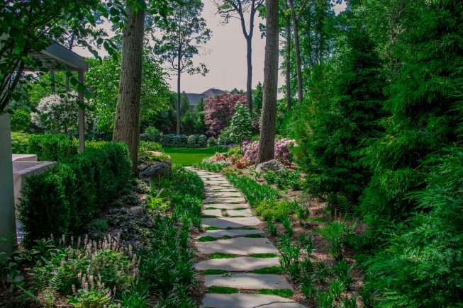 Pathways to other parts of the backyard