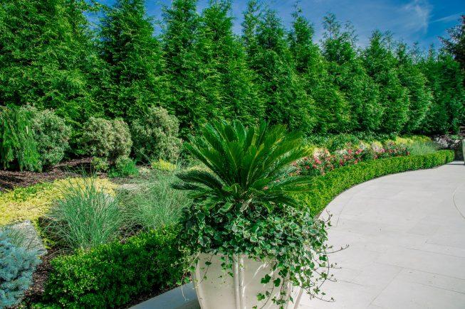 Palm Tree Planters